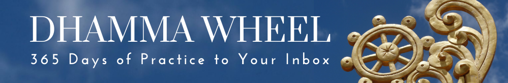 Dhamma Wheel 365 days of practice to your inbox