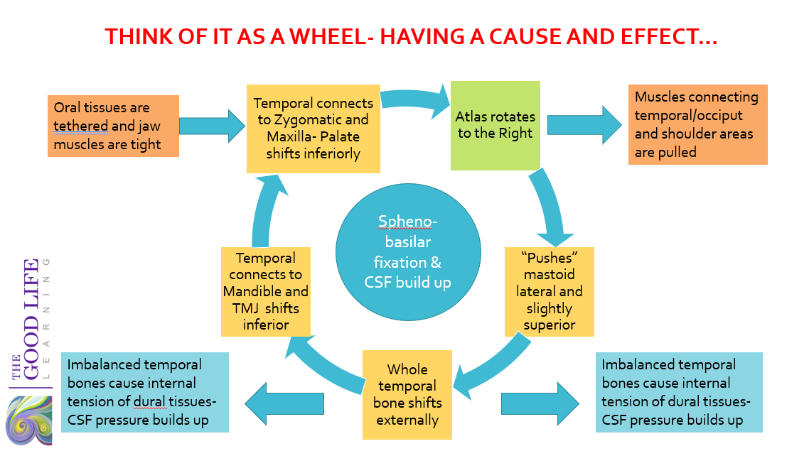 wheeldiagram