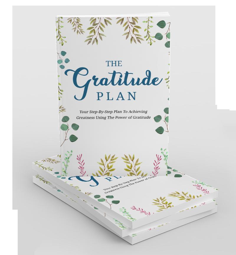The Gratitude Plan eBook Cover