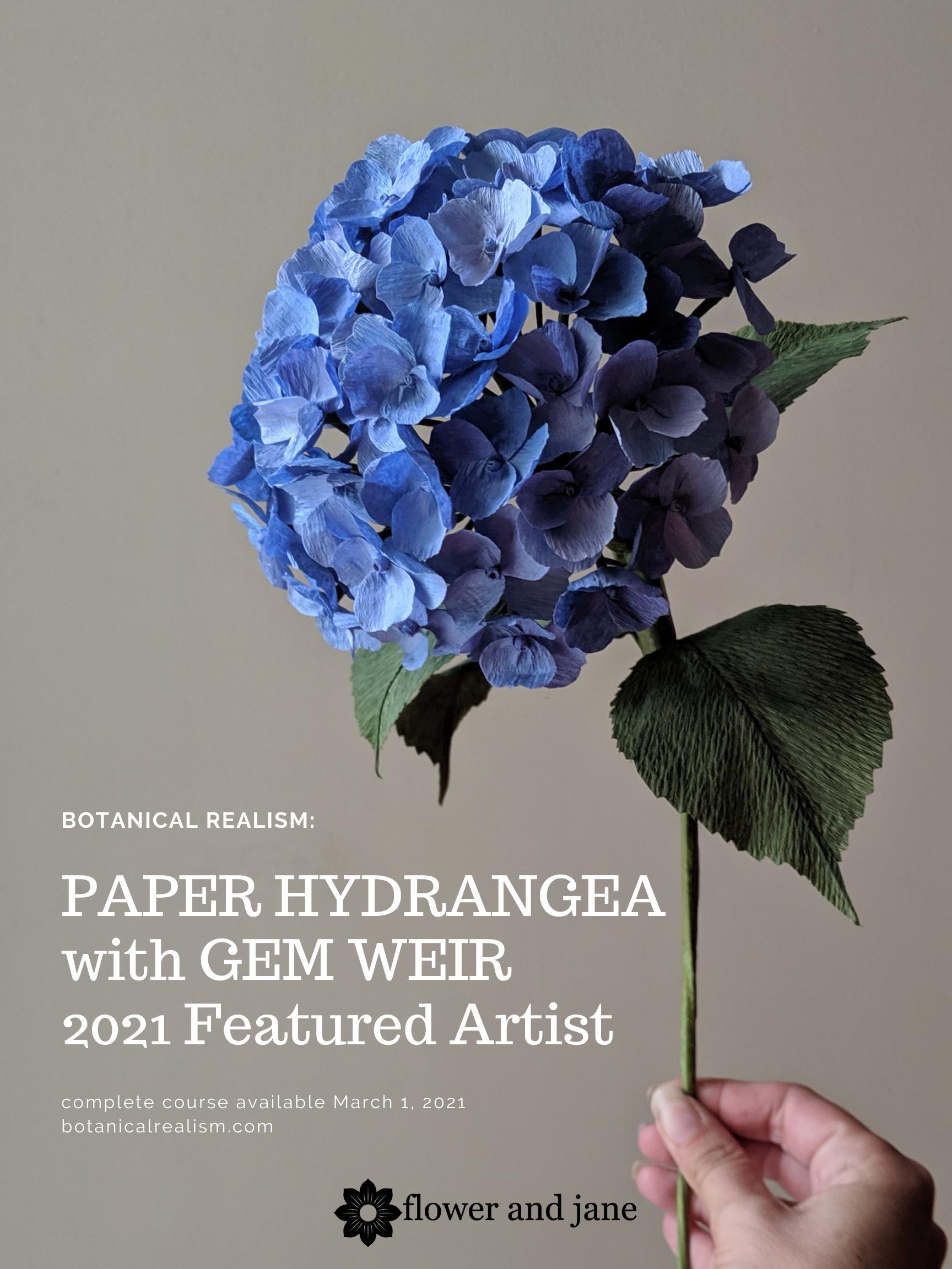 Gem Weir Featured Artist Botanical Realism